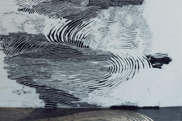 Camille Oarda - Superspectives - Lyon